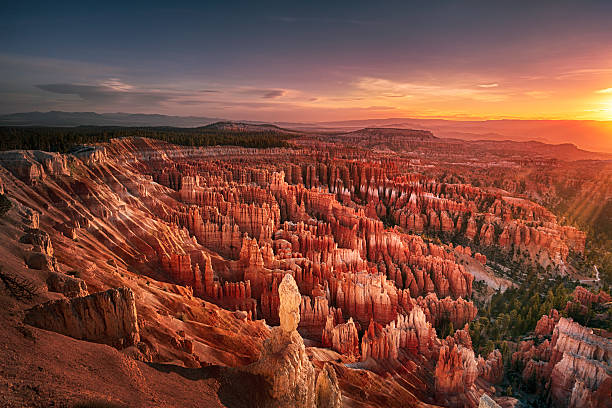 dawn over bryce canyon - bryce canyon national park stockfoto's en -beelden