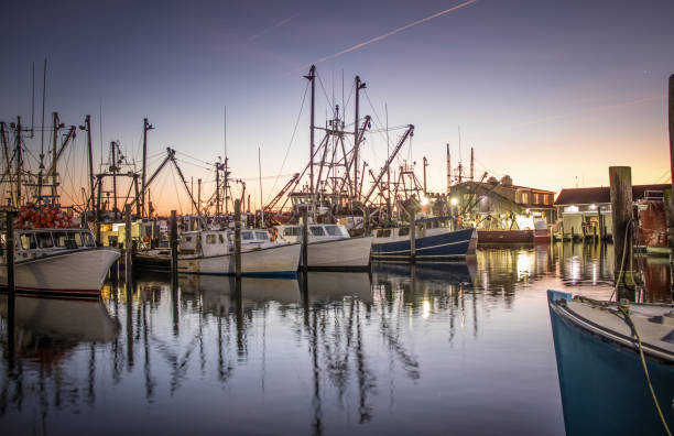 Dawn over the fishing fleet at Viking Village, Barnegat Light, NJ Early morning at Viking Village in Barnegat Light, New Jersey fishing boat stock pictures, royalty-free photos & images