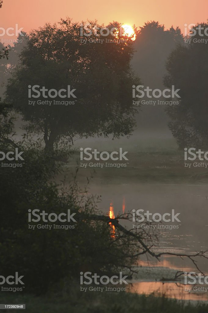dawn royalty-free stock photo