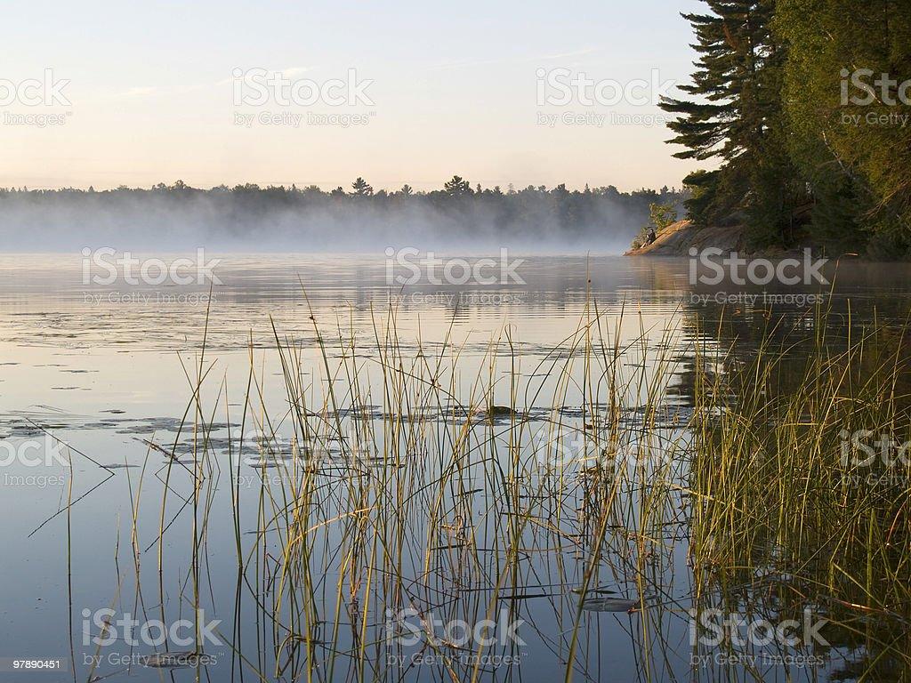 Dawn royalty-free stock photo