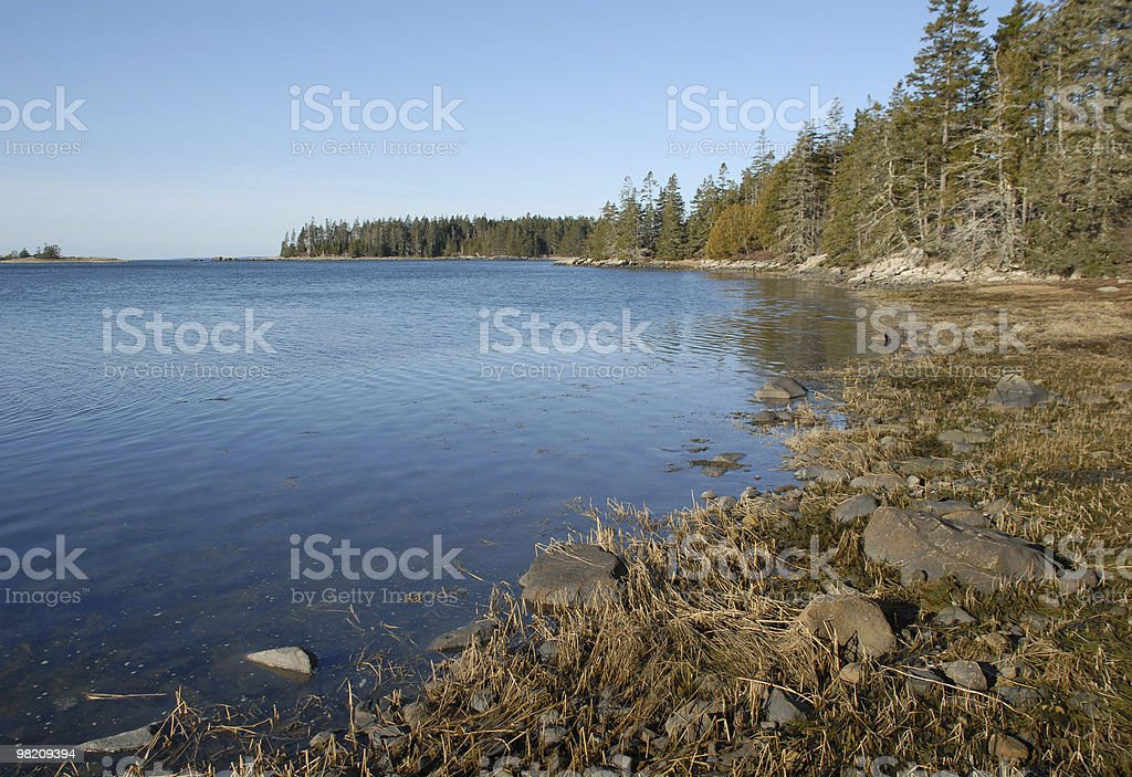 Dawn tide at salt water cove on Schoodic Point royalty-free stock photo