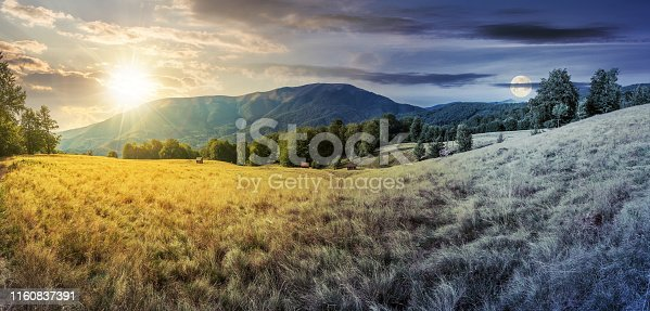 day and night time change in mountains. panorama with beech trees on the grassy meadow. ridge in the distance beneath a sky with sun and moon