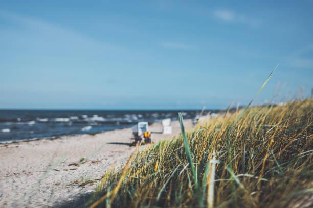 tag an der ostsee auf hiddensee in hellem sonnenlicht mit strandkorb - usedom stock-fotos und bilder