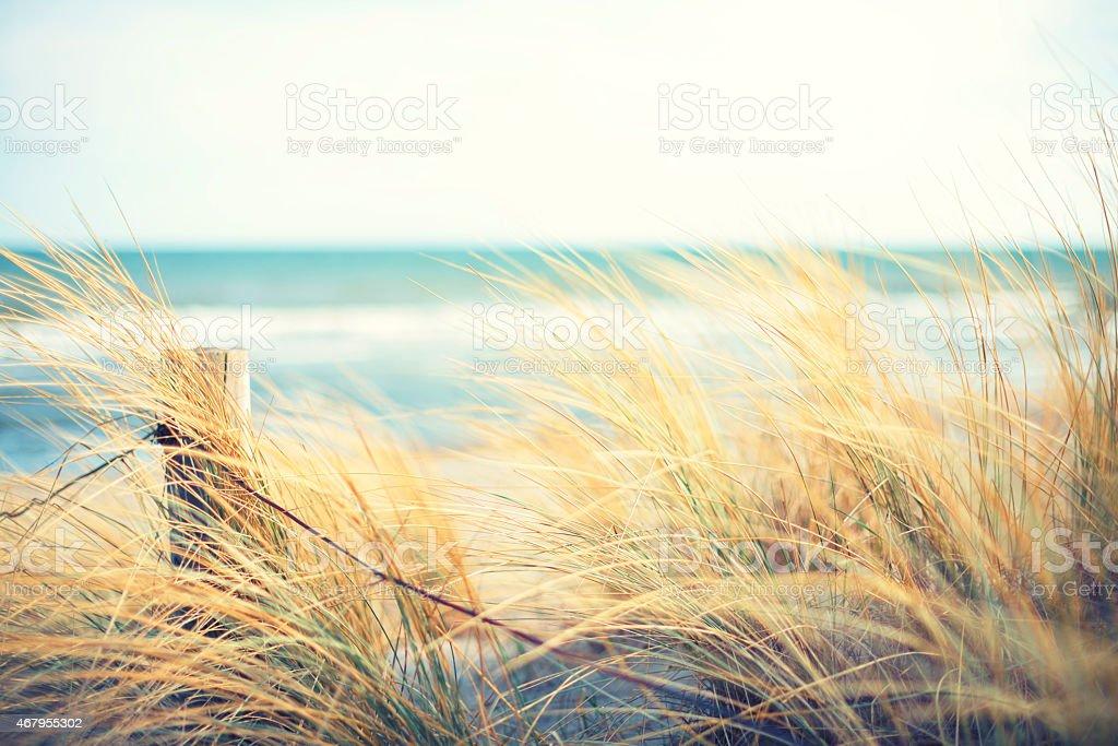 Día en el mar. - foto de stock