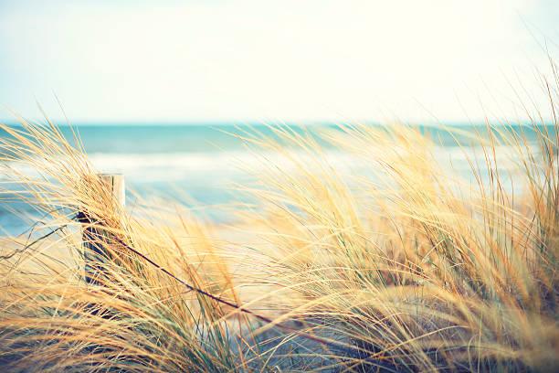 Journée à l'océan - Photo