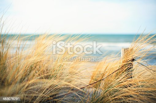 istock Day at the Ocean 483076291