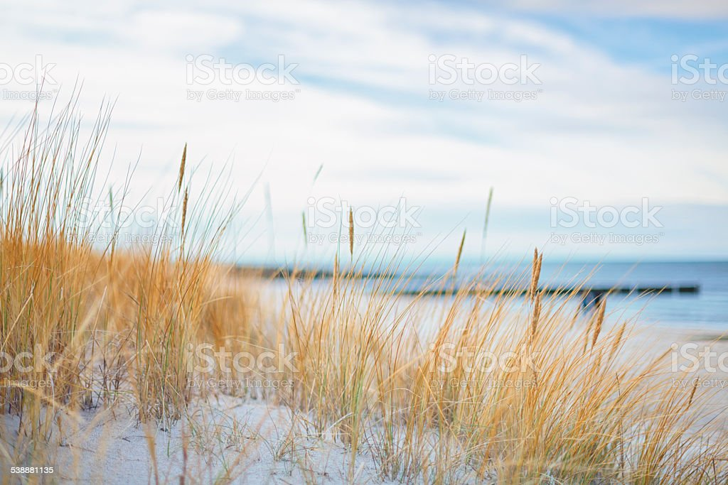 Day at the ocean. stock photo