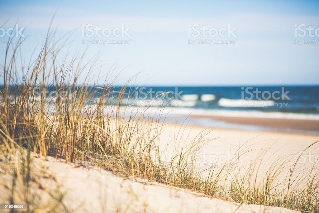 Day at the Ocean stock photo