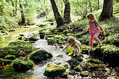 Two children having an adventure, climbing and stepping in a river exploring a beautiful natural area. Beautiful, idyllic and tranquil childhood moment. Sisters or friends, innocent and free