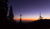 Time after sunset in mountain forest. View on colored sky with moon and city lights below. Tree silhouettes in foreground.