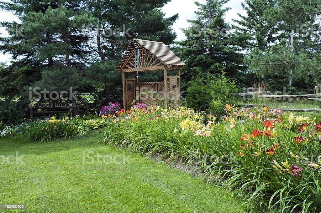 Hemerocale jardim foto royalty-free