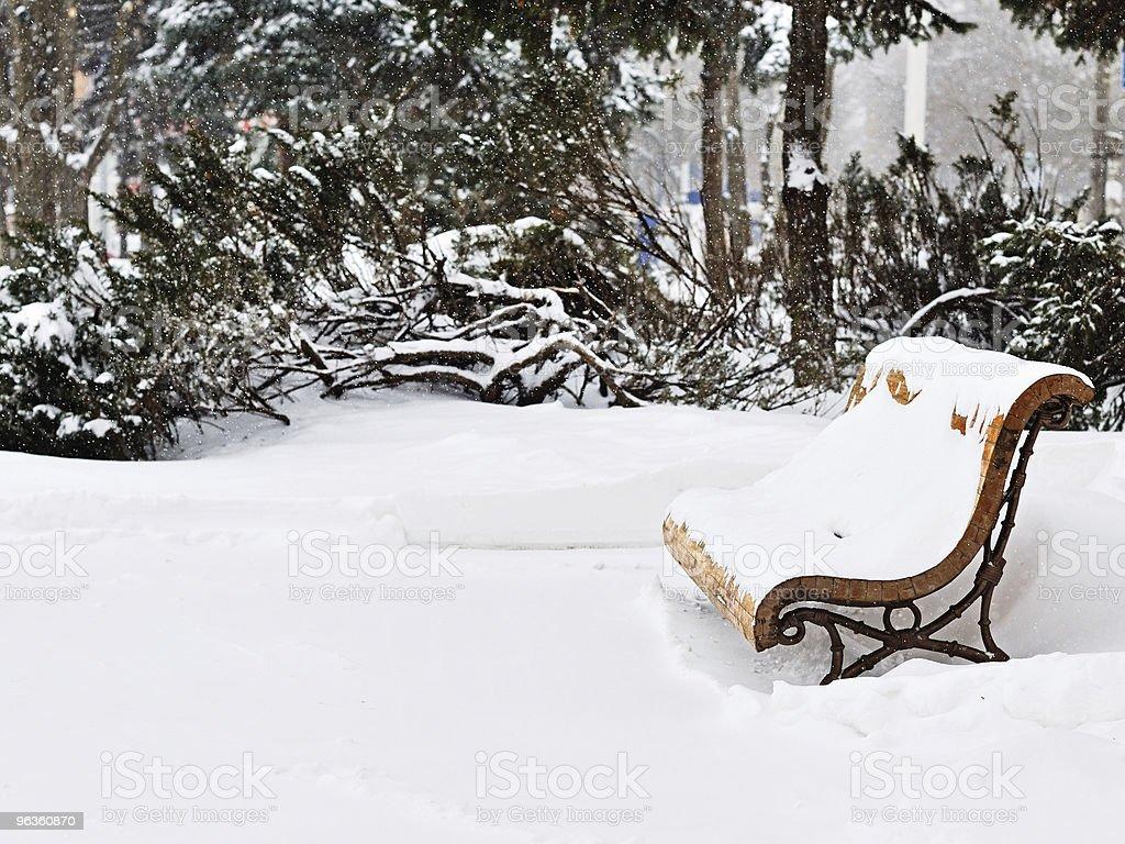 Day snowfall. royalty-free stock photo