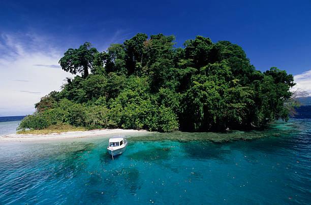 Tagesausflügler auf tropischen Insel – Foto