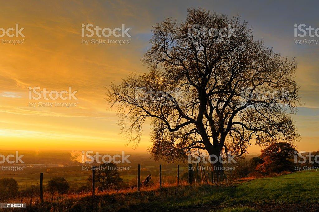 Daybreak stock photo