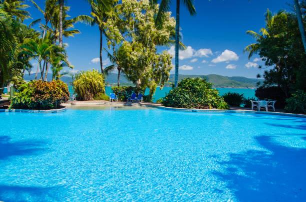 daydream island, queensland, australien - wasser stock pictures, royalty-free photos & images