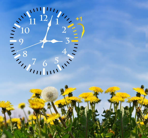 Daylight Saving Time. Change clock to summer time. Daylight Saving Time. DST. Wall Clock going to winter time. Turn time forward. Abstract photo of changing time at spring. daylight savings stock pictures, royalty-free photos & images