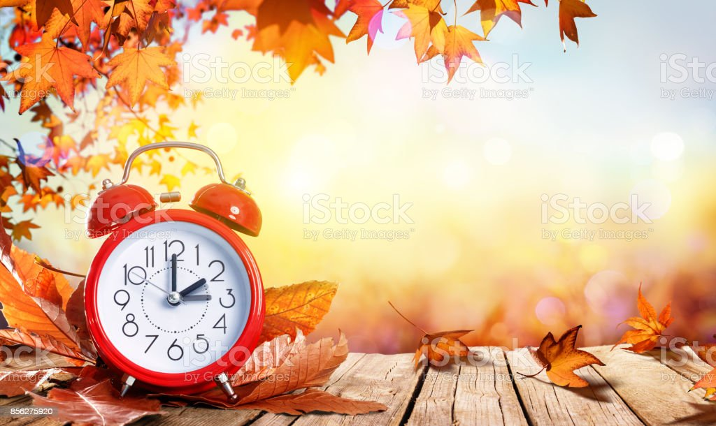 Daylight Savings Time Concept - Clock And Leaves In Fall Back Time stock photo