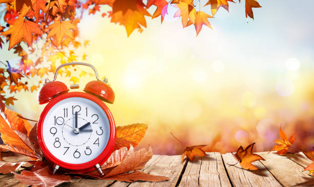 Daylight Savings Time Concept - Clock And Leaves In Fall Back Time Alarm And Foliage On Wooden Table time zone stock pictures, royalty-free photos & images