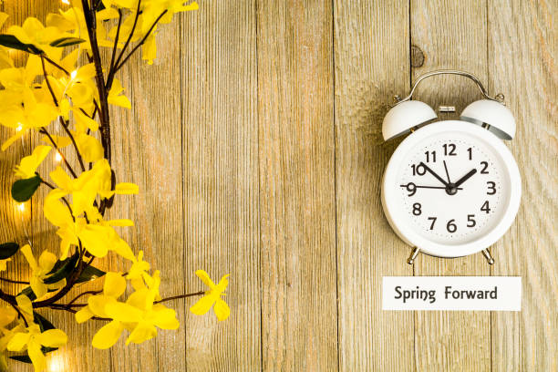 Daylight Savings Time Concept, Spring Forward, top view Daylight Savings Time Spring concept top down view with white clock and yellow forsythia flowers on wooden board daylight savings stock pictures, royalty-free photos & images