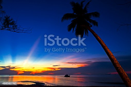 494377786istockphoto Dayspring beeautiful 488560762