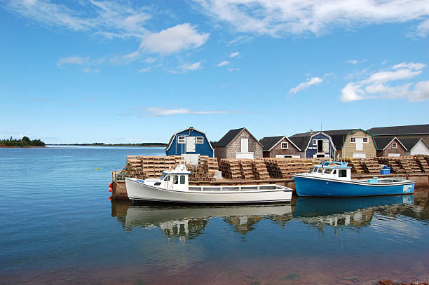 daytime view of a fishing marina in prince edward island - prince edward island stock photos and pictures