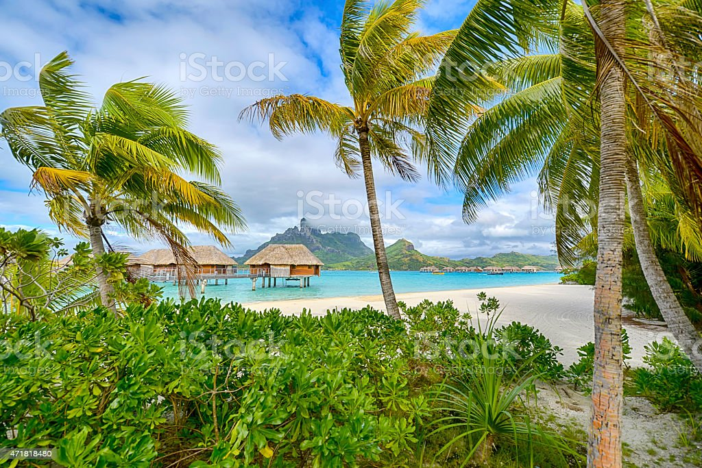 Daytime view of white sand beach in Polynesia stock photo