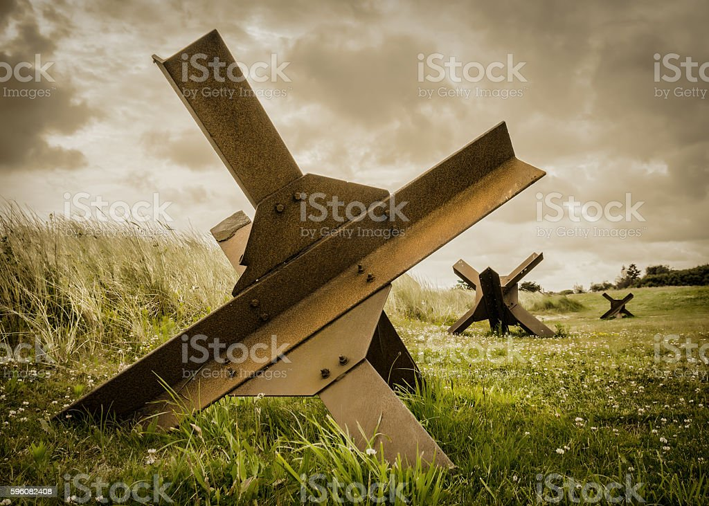 D-Day Hedgehogs stock photo