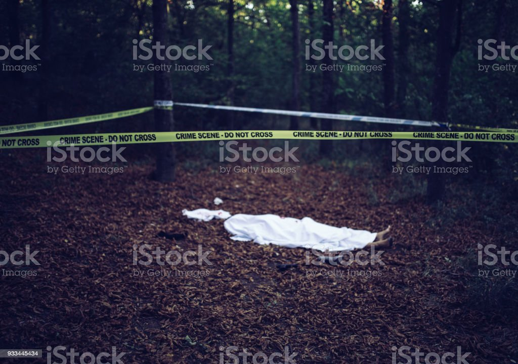 Leiche im Wald – Foto