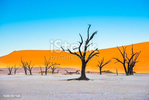 1083309578istockphoto Dead Camelthorn Trees and red dunes in Deadvlei, Sossusvlei, Namib-Naukluft National Park, Namibia 1035297100