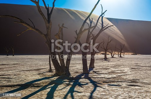 1083309578istockphoto Dead Camelthorn Trees and red dunes in Deadvlei, Sossusvlei, Namib-Naukluft National Park, Namibia 1157897103