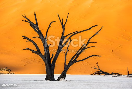 1083309578istockphoto Dead Camelthorn Trees and red dunes in Deadvlei, Sossusvlei, Namib-Naukluft National Park, Namibia 690807320
