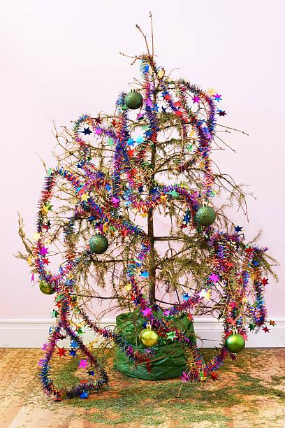dead árvore de natal - planta morta imagens e fotografias de stock