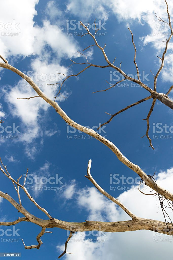 dead clouds stock photo