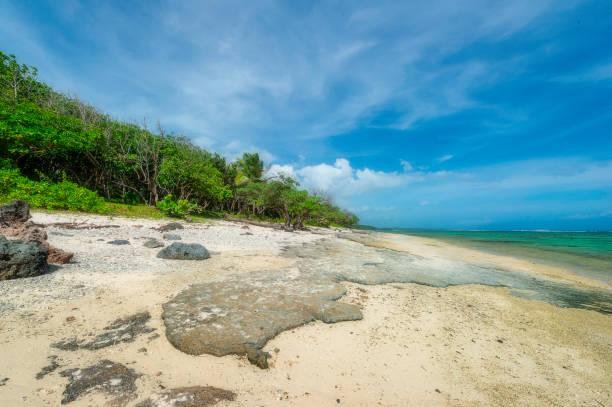 tote korallen - die toteninsel stock-fotos und bilder