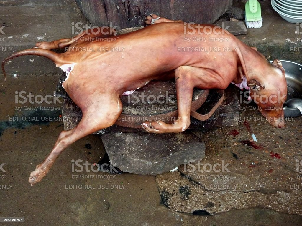 Dead dog, Dog meat food stall China stock photo
