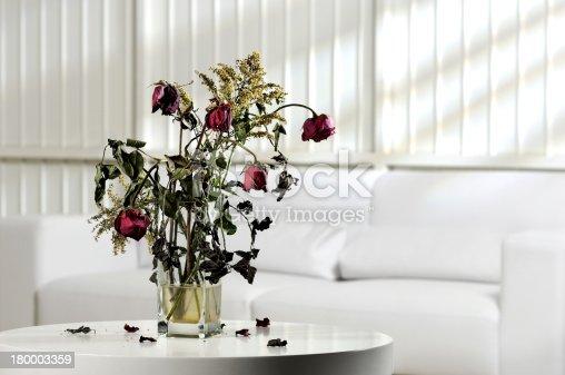 Photo scenery with vase