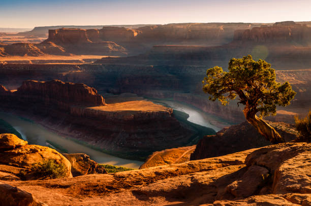 Dead Horse Point over Colorado River and Canyonlands at sunset – Utah, USA Dead Horse Point over Colorado River and Canyonlands at sunset – Utah, USA page arizona stock pictures, royalty-free photos & images