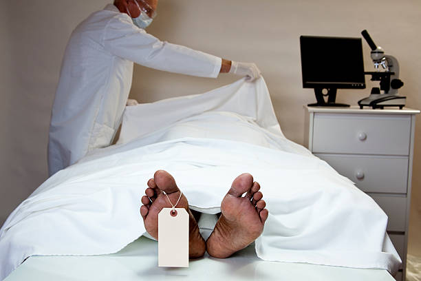 Best Morgue Stock Photos, Pictures & Royalty-Free Images