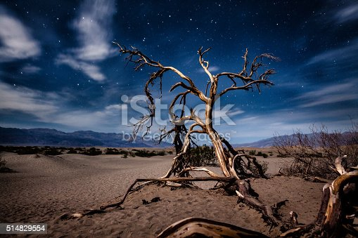 Mesquite Flat Sand Dunes in Death Valley National Park, California.