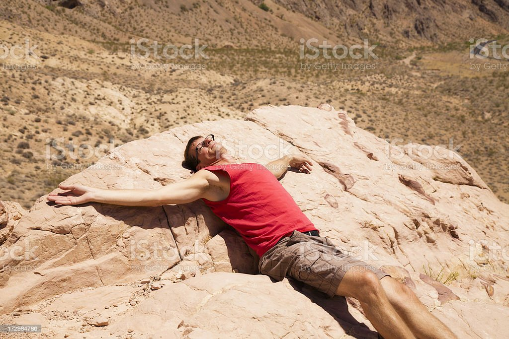 Dead on a Rock royalty-free stock photo