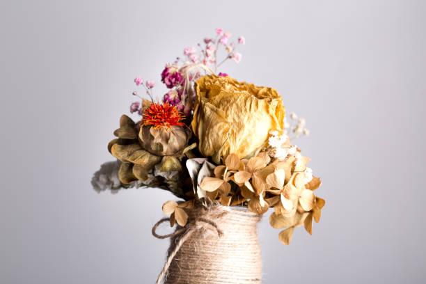 ramo de rosas muertas en el vaero estudio tiro - foto de stock