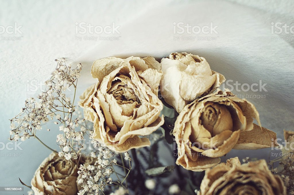 Dead Roses Bouquet royalty-free stock photo