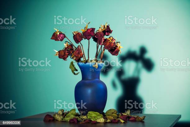 Dead roses in a vase on table picture id649960006?b=1&k=6&m=649960006&s=612x612&h=jxloxeeypdlyupcbjriz4ruczinvtagtcufdosdvw24=