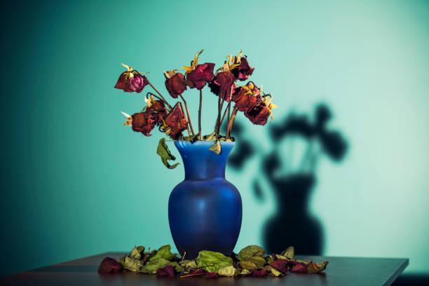 Dead roses in a vase on table picture id649960006?b=1&k=6&m=649960006&s=612x612&w=0&h=1jkz75yjymbin4qopihf ima3wd5qmmiiqbrvv6 m2w=