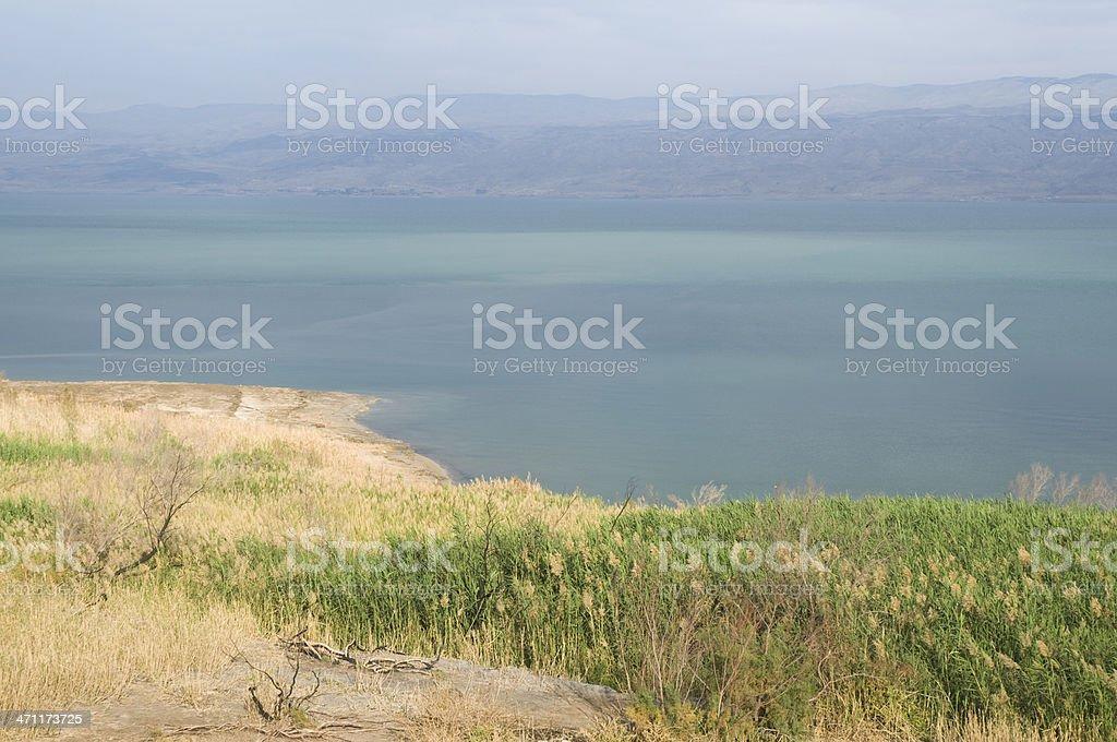 Dead sea, Israel stock photo