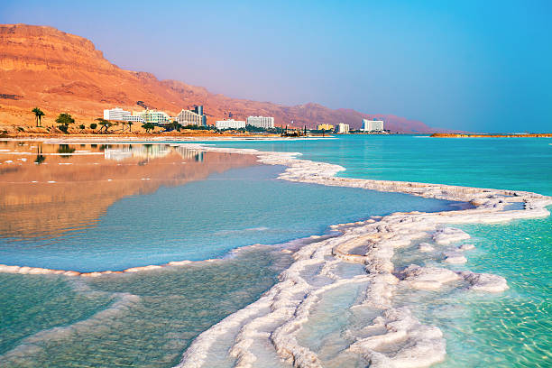 dead sea salt shore.   ein bokek, izrael - morze martwe zdjęcia i obrazy z banku zdjęć