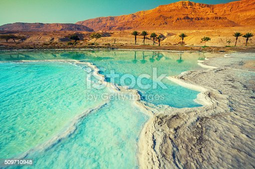 istock Dead sea salt shore 509710948