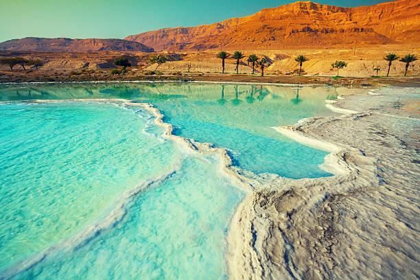 dead sea salt shore - israël stockfoto's en -beelden