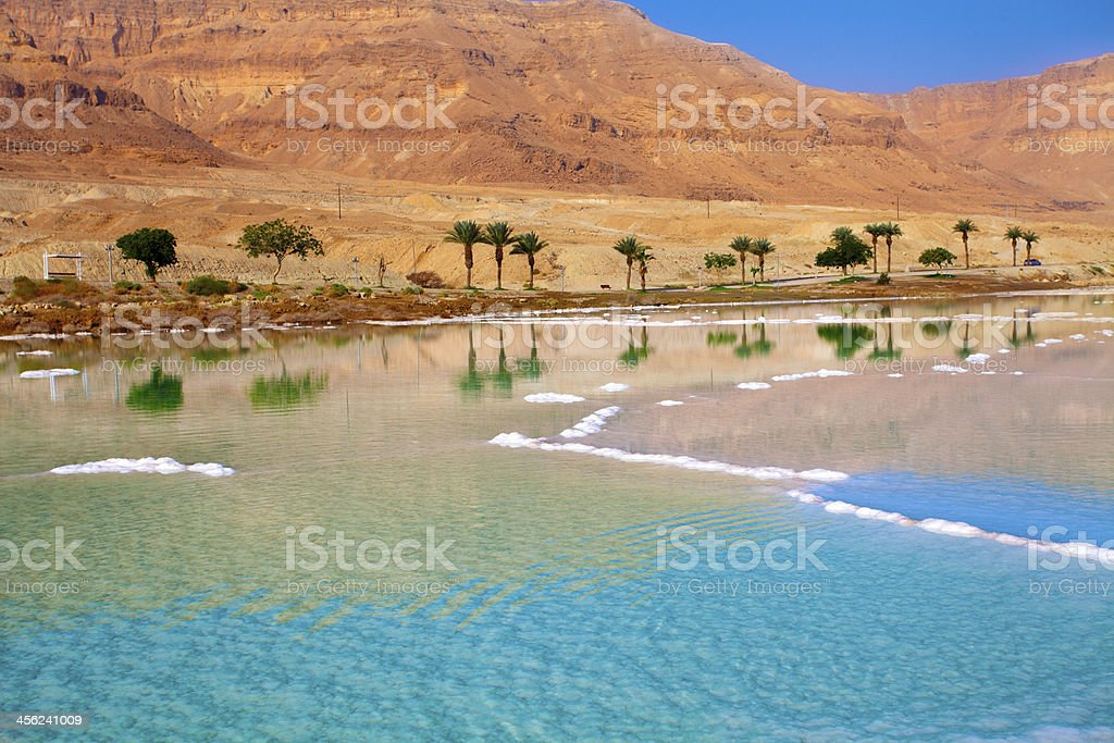 Dead Sea seashore stock photo