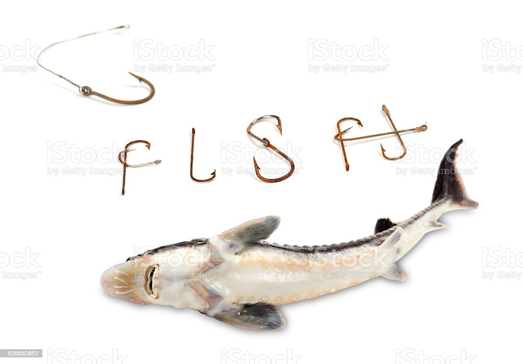 types of edible fish. silhouette of the types edible fish pictures, images and stock photos